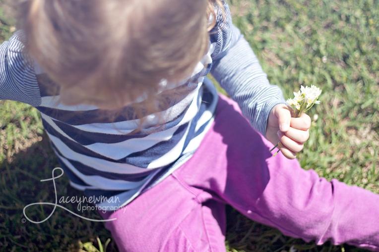 intheflowers2wmr