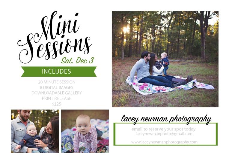 mini-sessions-2016